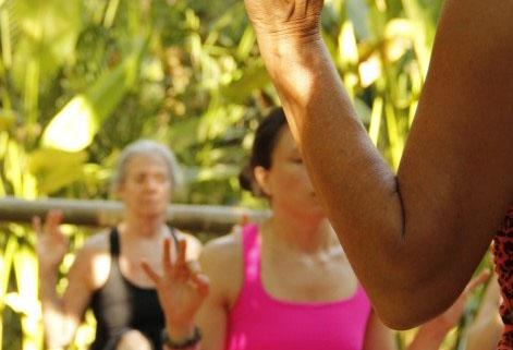 Ayurveda Healing & Yoga Retreat: August 10 - 16th in 2014