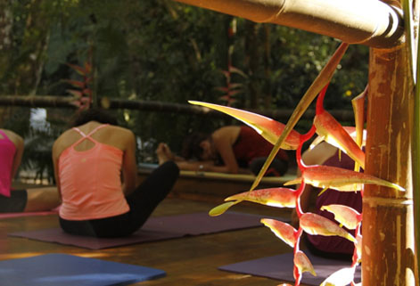 Ayurveda Healing Retreat in Waterfall Villas