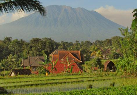 Bali Black Moon WaterfallYogi