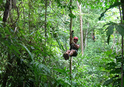 A person Canopy Zip-lining through the nature preserves.