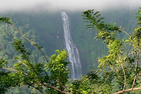 Quetzal National Park