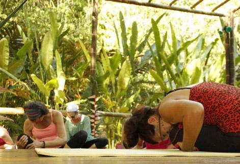Detox Costa Rica Diva Detox Package Waterfall Villas