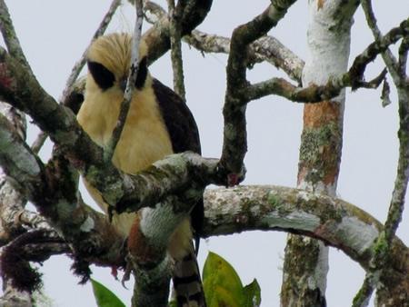 Costa Rica Eco Tourism