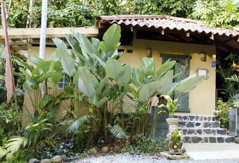 Detoxify at Waterfall Villas