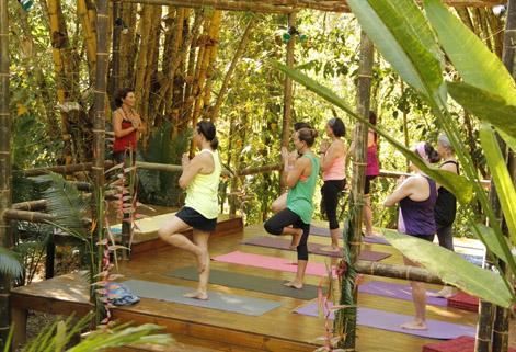 Rejuvenation and Detox Package in Waterfall Villas